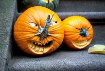 Halloween / by shop bluegrass