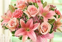 Pink / Pink flowers and gifts from the pink collection at 1800flowers.com are the perfect way to deliver smiles and show all pink lovers they look pleasant in pink!   / by 1-800-FLOWERS