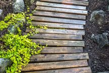 Walkways, patios and paths / Inspiration for all sorts of paths, walks and patios! / by shop bluegrass