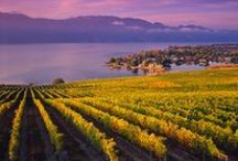 Thompson Okanagan / by Destination British Columbia