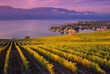 Thompson Okanagan / by Destination British Columbia