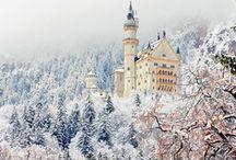 White Winter / Beautiful, Frosty Winter  / by Janelle Nichol