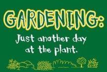 Garden quotes / by shop bluegrass