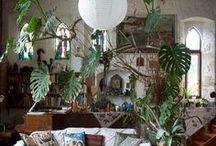 Déco urban-jungle / Déco végétale pour intérieur organique...