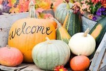 Fall Decor / by Amy Leigh Rogers