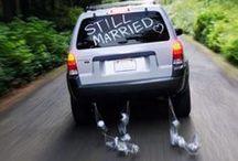 Wedding/Bridal/Bachelorette stuff / by Crystal Stumph
