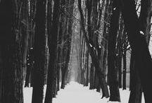 Winter / by Jessica Teas