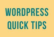 WordPress Quick Tips / WordPress tips and tools for newbie and experienced bloggers