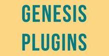 Genesis Plugins / WordPress plugins for Genesis Child Themes