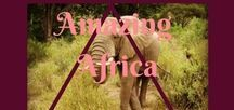 Amazing Africa / Traveling to Africa? Here are some pins that might help you along the way.