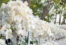 Inspiration  / Wedding inspiration by J.Andrew's Bridal. Pinned by Sarah Heath. Store Manager of J.Andrew's Bridal Sarah@Jandrewsbridal.com