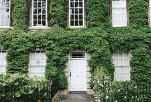   HOMEWARE / ARCHITECTURE   / by Marcia Stewart