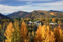Aspen Fall / Fall is the perfect time to visit #Aspen. Come experience the beauty for yourself. / by Aspen Meadows Resort