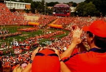 "Clemson / ""It's the Eye of the Tiger. It's the thrill of the fight. Rising up to the challenge of our rival and the last known survivor stalks his prey in the night and he's watching us all with the Eye of the Tiger"" -Survivor / by Rachel Malstrom"