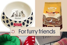 Gifts for the Pets  / Treats for man's best friend ... and all from our talented Moonfruit community! / by Moonfruit