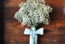 Wedding: Flowers / by Jessica Hogue