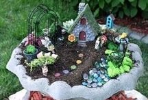 Fairy Gardens / by Icicle Garden