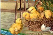 Vintage Easter / by Icicle Garden