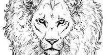 Wildlife Coloring Pages