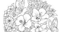 Butterflies Coloring Pages