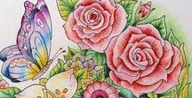Beautiful Coloring Book Pictures