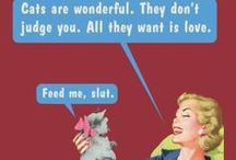 """Kitties =^.^= / You say """"crazy cat lady"""" like it's a bad thing? / by Whitney Fulton Alltop"""
