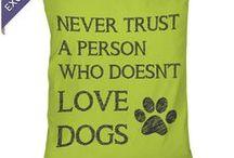 Dog Needs / by Michele Davidsmeyer