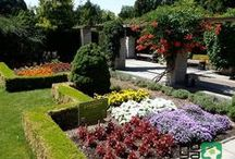 """THE BOTANICAL GARDEN OF THE COMENIUS UNIVERSITY part II. / Patronage over the Competition """"FLOWER LOVERS - GROW, ENJOY IT, SHARE AND WIN!"""""""
