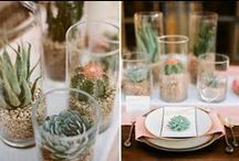 Tabletop / All the pretty and practical things to put on your kitchen table.