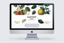 design + web / by Anne · Eagle Egg Creative