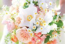 Beautiful Blooms / by Jen Bowles