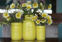 "Delightful Daisies / Daisies have always been and always will be my favorite flower!!!  I love their ""simple beauty""!!!"