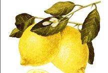 (for lemon) / inspiration, ideas, whatever :-)
