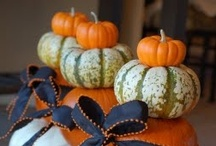 Fall/Thanksgiving / Foods, decor, ideas, crafts / by Christina 'Lee' Gasich