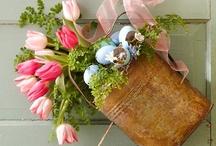 Springtime love / Easter and other springtime ideas! / by Ashley Lynn