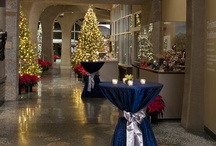 Holiday Weddings / Frederik Meijer Gardens & Sculpture Park hosts a variety of gorgeous holiday weddings throughout the winter months. Grab some holiday-themed inspiration here.  / by Meijer Gardens