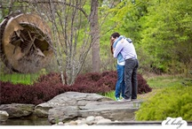 Engagement Photos / Frederik Meijer Gardens & Sculpture Park is the perfect spot for beautiful engagement photos.  / by Meijer Gardens