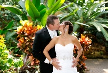 Indoor Ceremonies / Frederik Meijer Gardens & Sculpture Park has a variety of beautiful indoor wedding ceremony options. / by Meijer Gardens