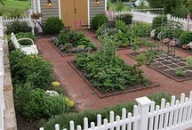 The Potager / talk about a dream board! what I wouldn't give for one of these