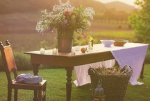 gather / comfort & beauty outdoors... / by betsy ann