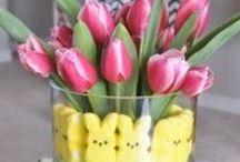 Easter Fun / by Kim Swezey