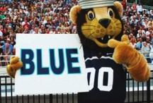 ODU School Spirit & Monarch Pride / by ODU Career Development Services