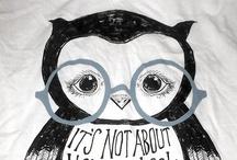Corujas & Mochos & Owls / Variedades de Corujas e Mochos