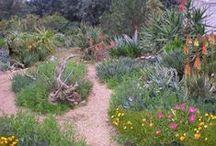 Gardening Delights / vegetable gardening, indoor gardening, houseplants, outdoor planted spaces / by U.B. Universal