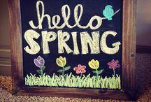 Spring/Summer / Holiday
