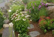 Garden Time / by Allison Russell-Gerbrandt