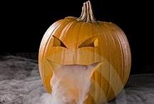 Halloween / by Barbara Moore