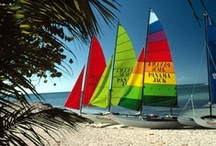 Key West /  Come experience our beautiful and quirky island for yourself! / by Banyan Resort