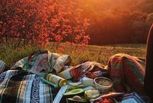 Picnic lovely
