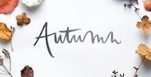 Seasonal Inspiration: Autumn / All things #autumn, from #fall leaves to #Thanksgiving tablescapes, #harvest decorations, #apples, #pumpkins, #squash, and more. #seasonal | Learn more about me and my novels at www.cerellasechrist.com